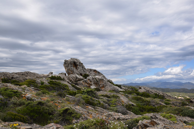 Paraje de Tudela. Parque Natural de Cap de Creus