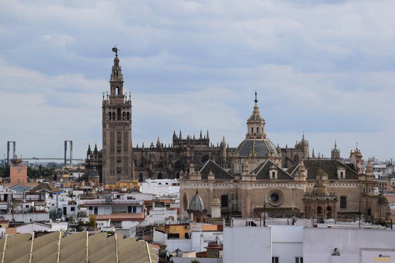 Puente del V Centenario. Giralda y Catedral. Setas de Sevilla