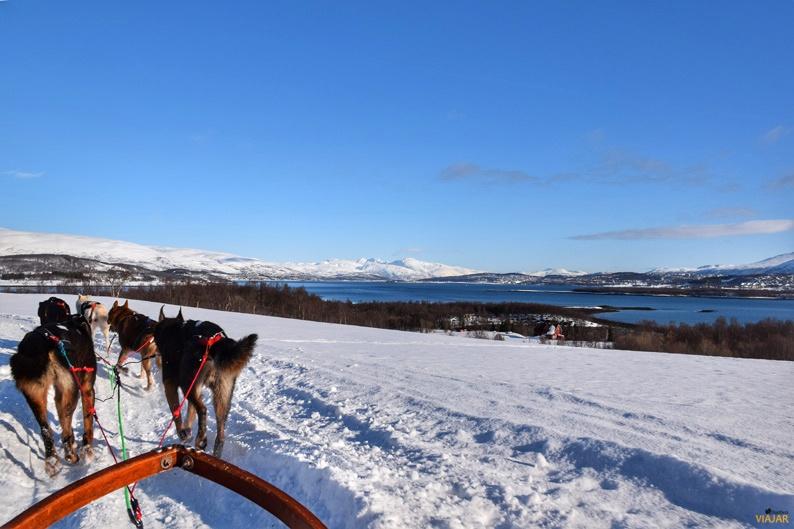 Bordeando el mar a bordo de un trineo de perros. Laponia noruega