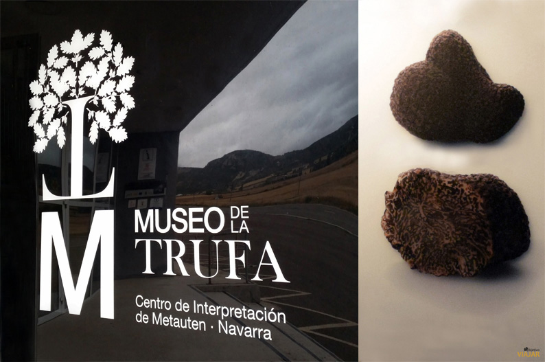 Museo de la Trufa. Metauten Tierra Estella. Navarra