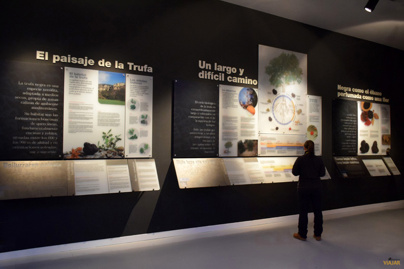 Museo de la Trufa. Tierra Estella. Navarra