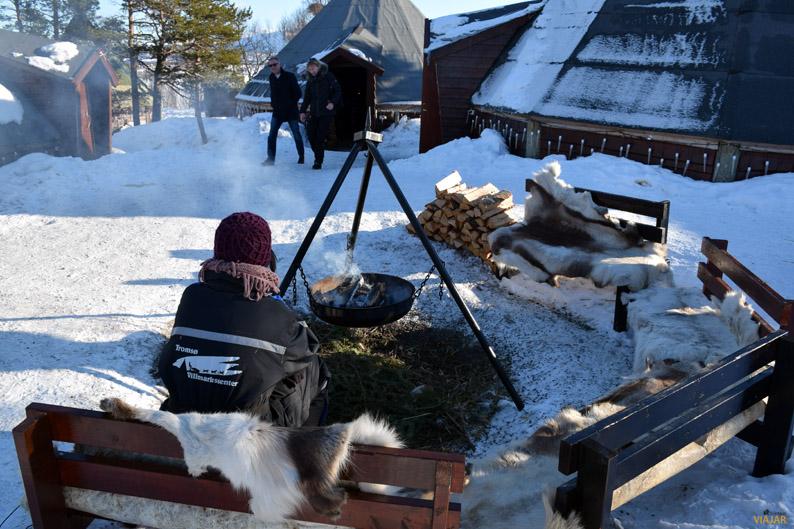 Un momento de soledad al calor del fuego. Trineo de perros. Laponia noruega