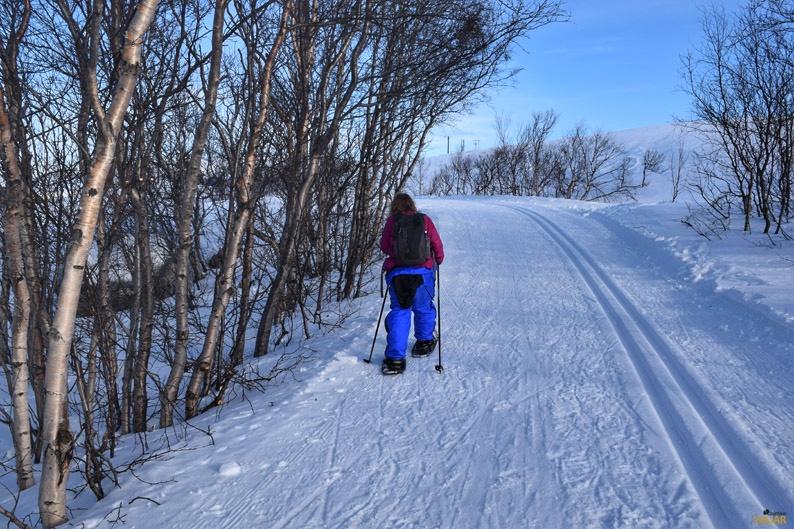 Caminata con raquetas de nieve. Laponia noruega