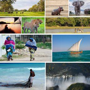 Próximo destino: Zambia y Zanzíbar. Reflexiones previas a un viaje muy esperado