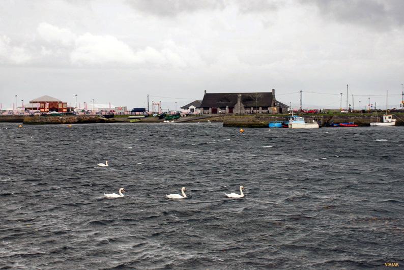 Bahía de Galway. Irlanda