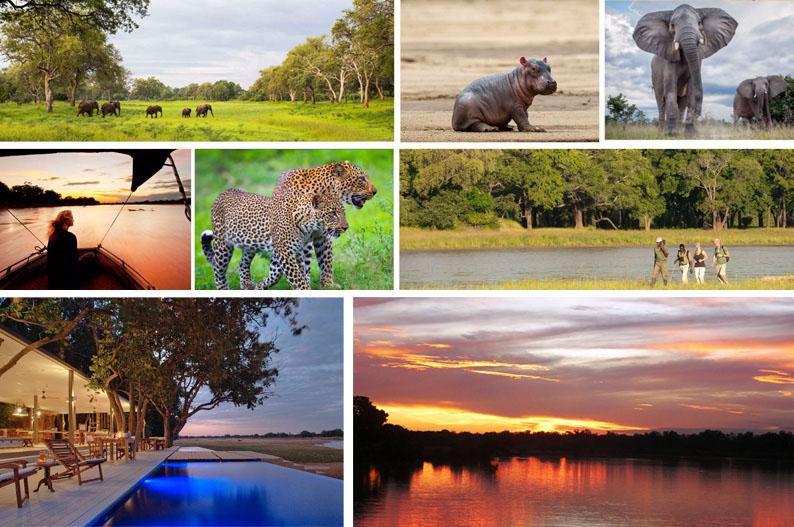 South Luangwa National Park. Zambia. Fotos Norman Carr Safaris