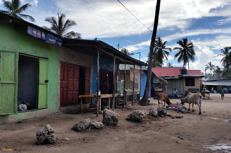 La otra Zanzibar
