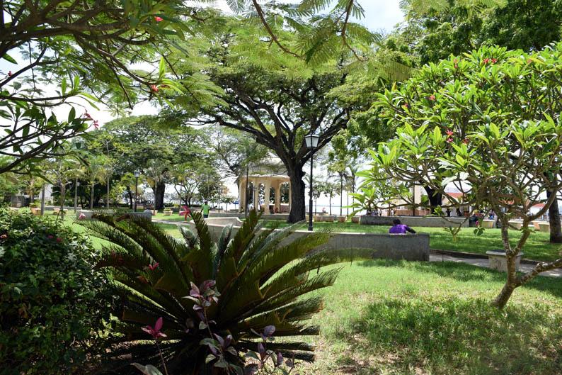 Jardines de Forodhani. Stone Town. Zanzibar