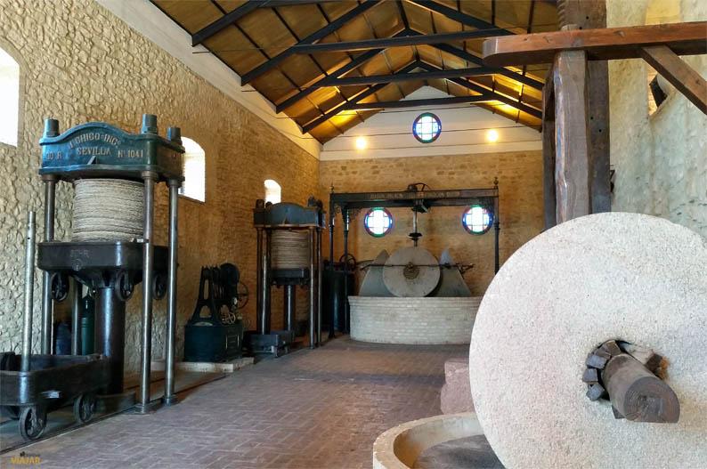 Museo del Aceite Juan Colin. Que ver en Montilla