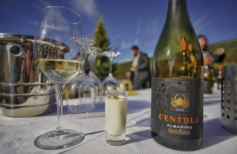 Degustando Centola, un gran albariño en el jardin del Museo del Vino de Pagos del Rey © Un viaje creativo