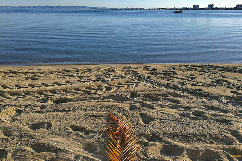 Playa del Mar Menor