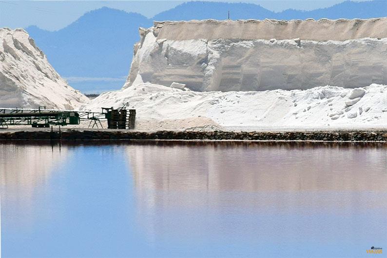 Salinas del Mar Menor