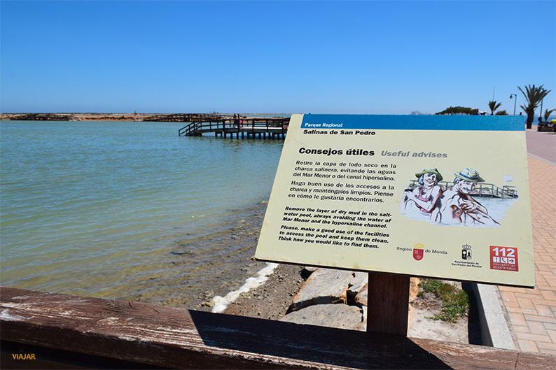Lodos del Mar Menor