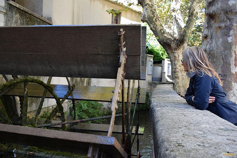 Rue des Teinturies y canal de la Sorgue. Avignon. Francia