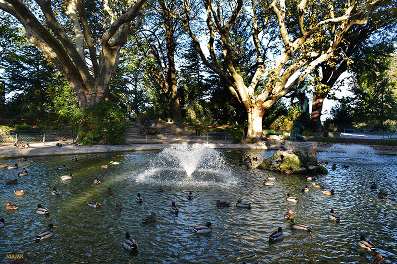 Jardines des Doms. Que ver en Avignon. Francia