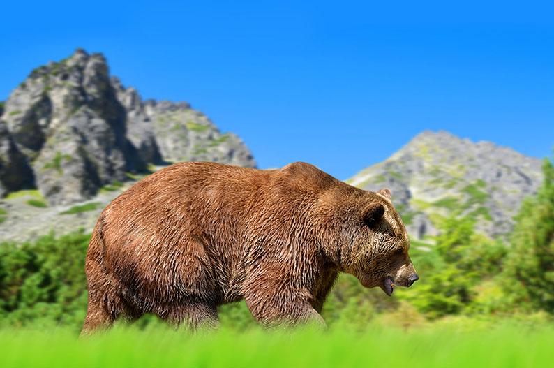 Alto Tatra, Eslovaquia. Un gran destino para el mejor de los veranos