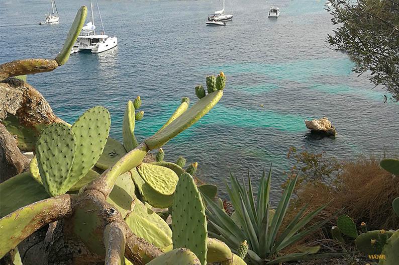 Purobeach Illetas, un imprescindible de Mallorca