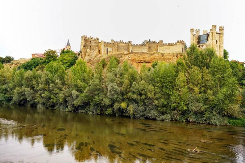 Castillo de Valencia de Don Juan. Leon