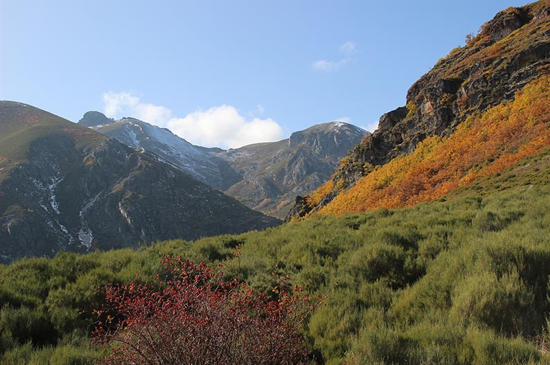 Reserva de la Biosfera de Babia. Naturaleza en Leon