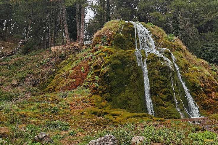 Fuente La Tejeda