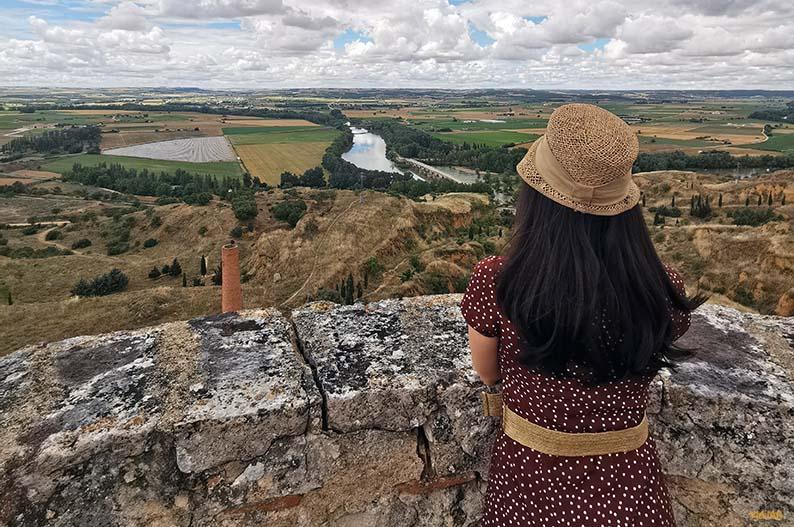 Panoramica de la vega del Duero desde el Alcazar. Ruta Vino de Toro